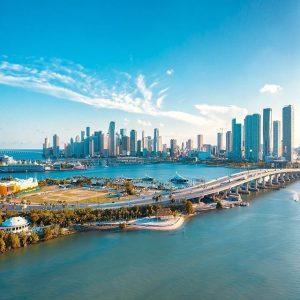 Miami fibroblast